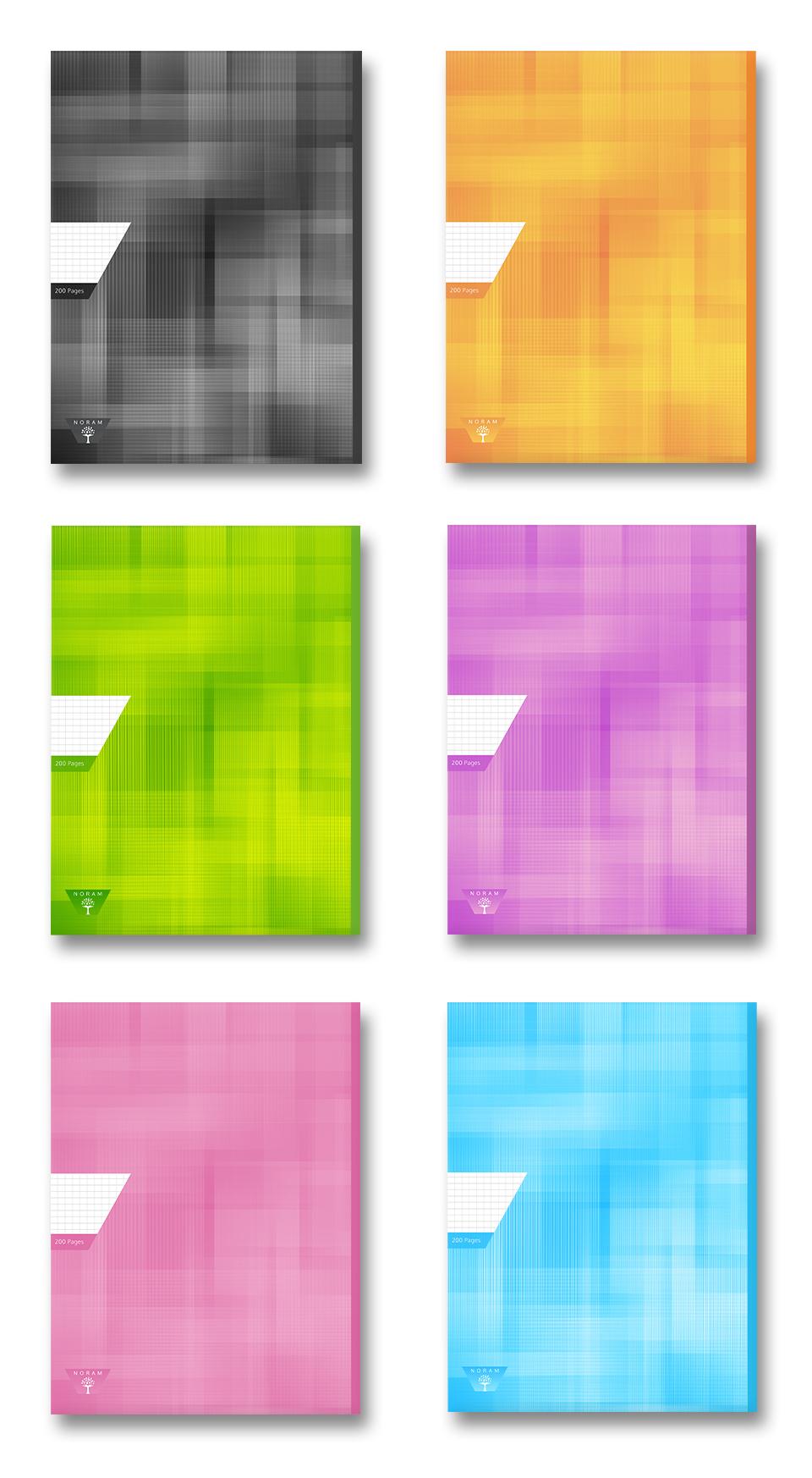 création du logotype et réalisation des cahier Noram SARL E.A.P.I - portfolio da-conceicao.com