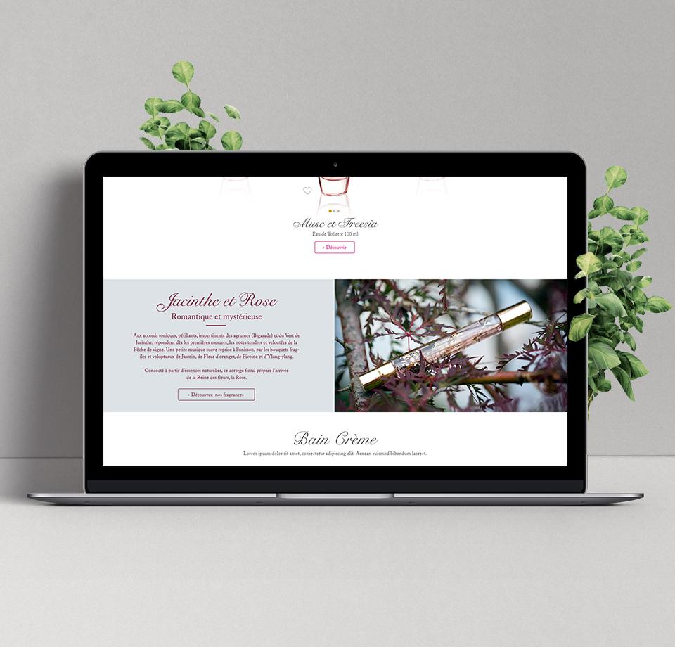 Conception et design graphique du site internet E-Coudray | page accueil