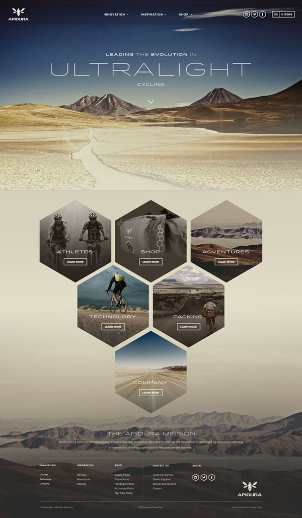 Inspiration graphique web site internet : Apidura